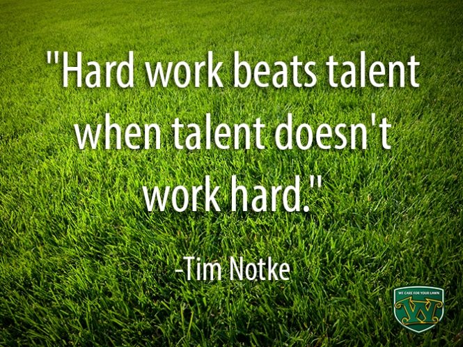 Hard Work Quote